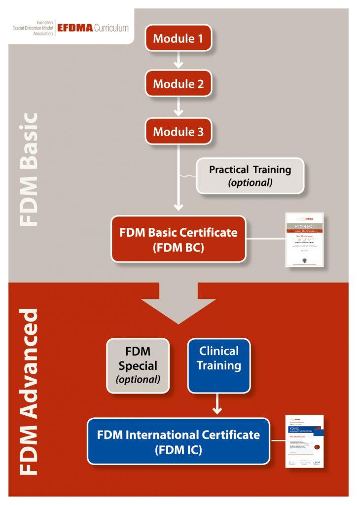 efdma modules